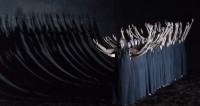 La saison à l'Opéra de Paris en #AirduJour : Elektra