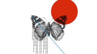 Madame Butterfly au Théâtre Carlo Felice de Gênes (direct)