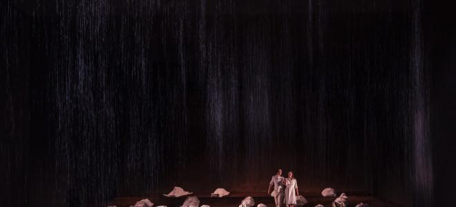 La Flûte enchantée dans la Bastille fermée, L'Opéra chez soi