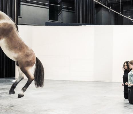 Anaïs Yvoz & Noa Frenkel - Until the Lions