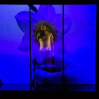 Benoit Rameau - Narcisse