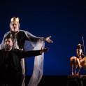 Don Quichotte par Louis Désiré
